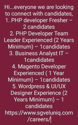 PHP Developer , Business analyst, Magento developer