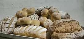 Lowongan Asisten Baker (Pabrik Roti)
