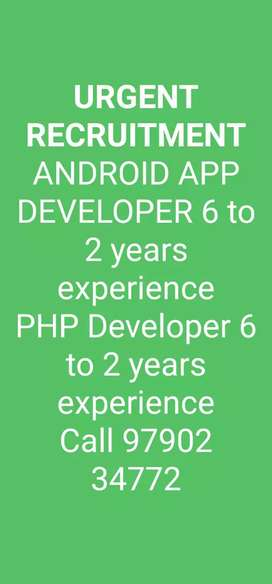 PHP developer, Android and iOS developer, UI & UX developer