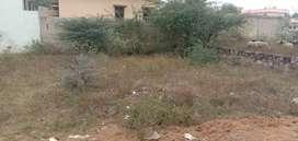 285.70 Sq. Yards Plot available for sale in Vidhayak Nagar, Chirawa