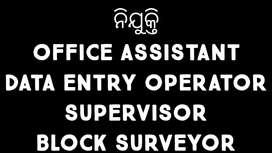 HIRING DEO, OFFICE EXECUTIVE, BLOCK SURVEYOR