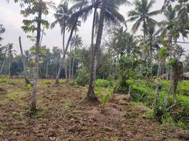 Property good farmin,house,resorts, agricultural activities