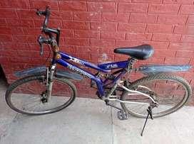 X-sport cycle, BSA lady bird
