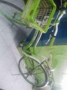 Sepeda Wanita Merek Phoenix