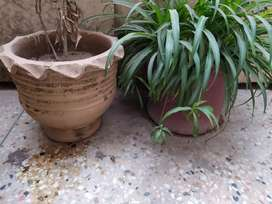 All Pots (Rs. 4000)  for sale