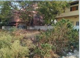 Open Plot 386yards in Bheemaram Hanamkonda