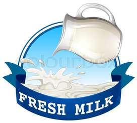 Full Pure and fresh milk available