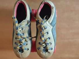Quad Shoe Skates