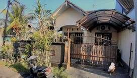 Rumah  Murah Di Patih Nambi, Denpasar Bali D Ahmad Yani,Cokro,Ubung