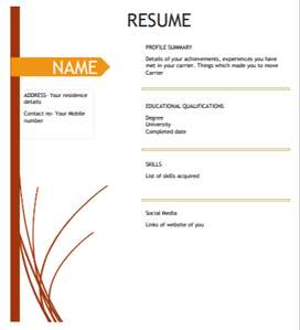 Professional resume at Rs 300/-