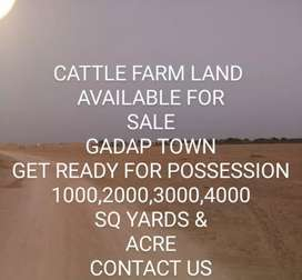 CATTLE FARM LAND AVAILABLE FOR SALE