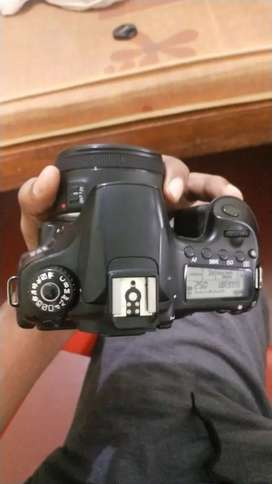 Rent For CANON 60D With 50MM Prime Lens