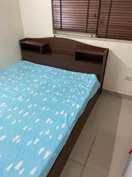 Urban ladder queens bed