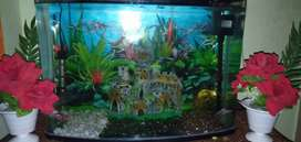 Rs aquarium for sell imported tank