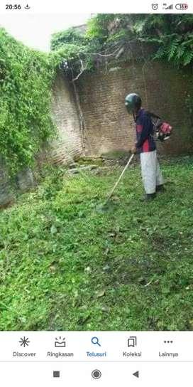 Jasa potong rumput kebun/halaman, ladang, lapangan dan lain sebagainya