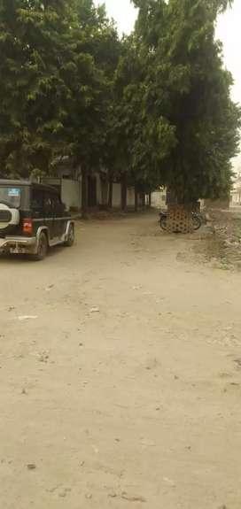 100 sq.yards plot in shyam nagar near hansmandir