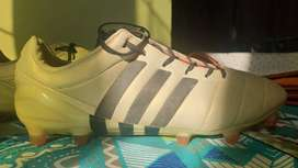 Adidas Predator(limited edition champagne color) FG football shoes.