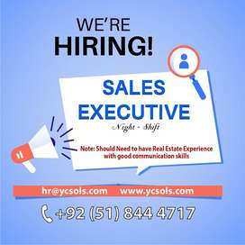 Sales Executives/Consultants