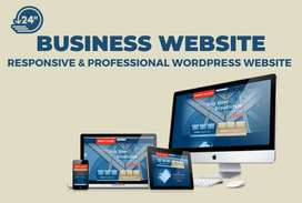 I will develop, design or redesign a professional pro website