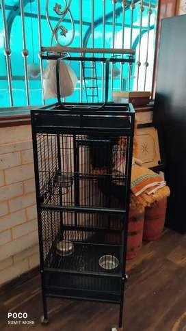 Parrot pinjara