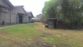 Di Jual Gudang Tanah 1 Hektar Mekarsari Cileungsi