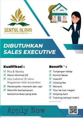 Lowongan sales, marketing, property