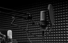 Professional Studio Recording Affordable price