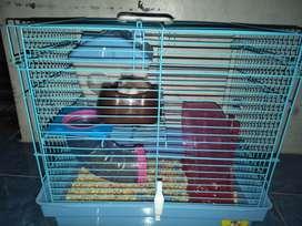 Hamster Winter White Dan Kandang Fullset