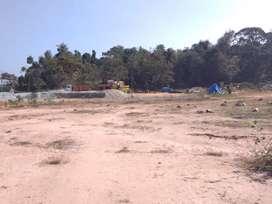 Plots for sale in mudigere horati