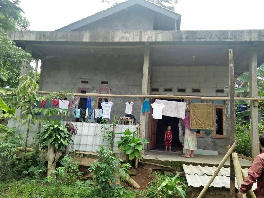 rumah asri pedesaan