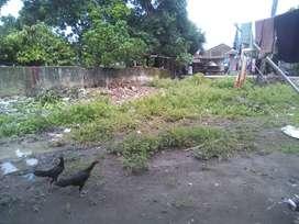 Sebidang tanah di Galesong Utara