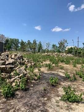 Tanah kosong Wonosari siap pakai