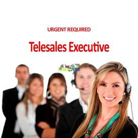 Experience Real Estate Telecalle's Required