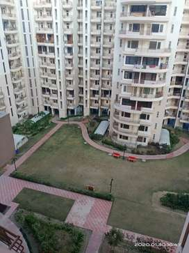 3bhk flat in Apex green society sonipat