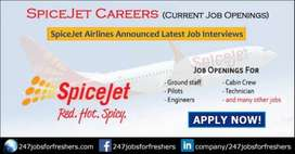 We are Hiring for the airport jobs Air Ticketing / Ground Staff