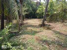 Land/plot for sale!