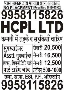 HCPL LTD JOBS OPENING FOR BOYS/GIRLS