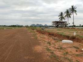 the big project in 60 acres near BRAC township quatears