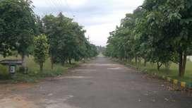 from NH5 400 mtrs Distance vudaplots in sai priya gardens lankalapalem