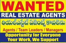 Real estate marketing manager's & sale manager's required