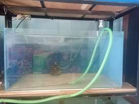 Akuarium ukuran 100x50x50cm tebal 5cm