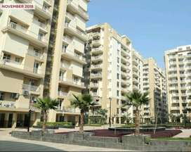 READY TO MOVE 2BHK-3BHK-4BHK FLAT,SHOWROOM,DUPLEX,VILLA.PLOT,STUDIO