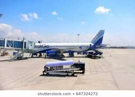 Aviation industry hiring manager and supervisor