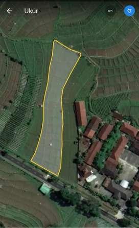 Tanah murah tepi aspal temanggung Kedu dekat SMPN 1 Kedu Jawa Tengah