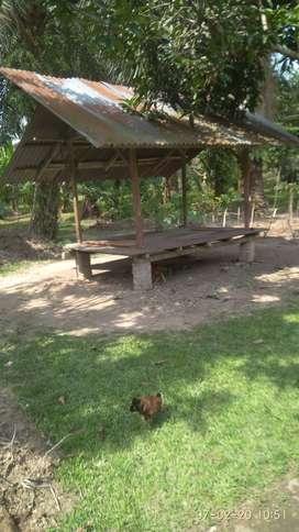 Jual Tanah Kavlingan, Lokasi Depan Jln Lintas Sumatera Utara