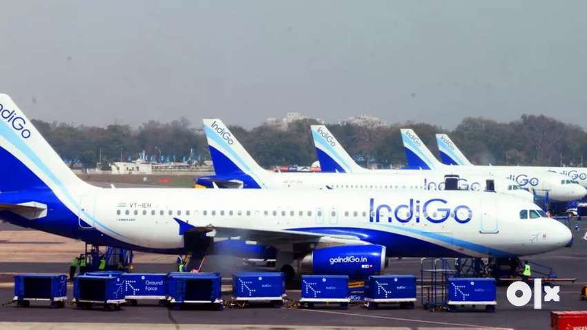 Direct hiring for ground staff limited seats 0