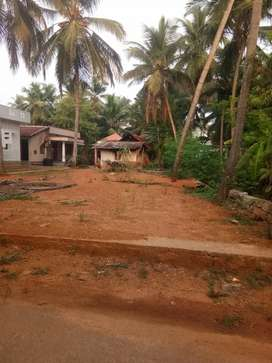 7 cents land for sale