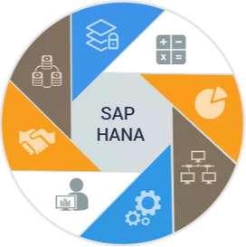 SAP FICO and S4 HANA Simple Finance Training
