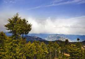 Scenic Shimla Honeymoon Package From Delhi  ( 3 Days & 2 Nights)