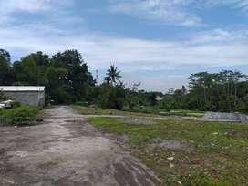 Tanah Murah Jl. Magelang Dekat Kampung Flory Terima SHM